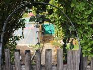 Passau: Wegen überhängender Äste: Rentner soll 54-Jährigen erdrosselt haben