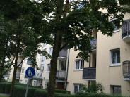 Bäume in Mindelheim haben es schwer: Die Stadt wirft die Motorsäge an