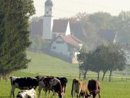 Heimat im Unterallgäu: Was jungen Unterallgäuern in der Fremde fehlt