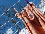 Haushalt: Warum nasse Wäsche auch bei Minusgraden im Freien trocknet