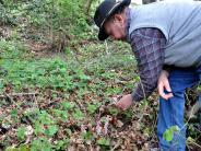 Umweltschutz im Unterallgäu: Dieser Hang ist kein Abfalllager