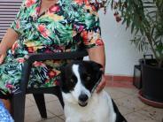 Kolumne: Mit Molly rund um Mindelheim