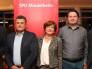 Streit in Mindelheim: SPD befürwortet Bebauung der Lautenwirtswiese in Mindelheim