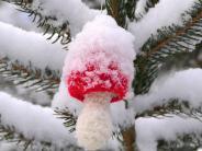 Ungewöhnliches Wetterphänomen: Der Wintertag begann mit einem Knall