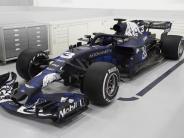 Formel 1: Red Bull in Tarnfarbe - Pilot Verstappen schon verliebt