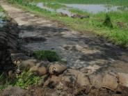 : Neuer Damm soll Flutwellen abhalten