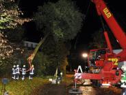 Ulm/Neu-Ulm: Gonzalo bläst mit zerstörerischer Kraft: Zwei Menschen verletzt