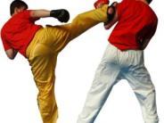 Kampfsport: Kickboxer messen sich in der Fuggerstadt