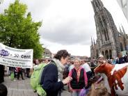 Ulm: Milchbauern in Not: Volle Tanks, leere Taschen