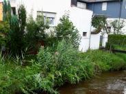 Weißenhorn: Kampf gegen das Wasser beginnt