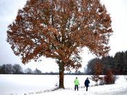 Neu-Ulm: Die (un)schönen Seiten des Winters