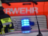 Polizei: Gestohlener Kleinlaster steht brennend im Wald