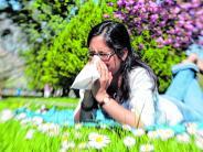 Landkreis: Die Pollen fliegen wieder: So wappnen Sie sich