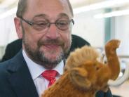 Ulm: Eine neue Mammutaufgabe für Schulz