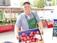 Landkreis: Diese Äpfel sind bald Mangelware