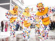 Ulm: Tausende Besucher beim Ulmzug 2018