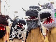 Ulm: Tiere, Hexen und skurrile Wesen