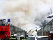 Neu-Ulm: Brand bricht in Gärtnerei in Ludwigsfeld aus