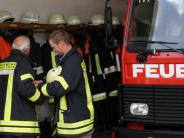 Ulm: Hund verursacht Küchenbrand
