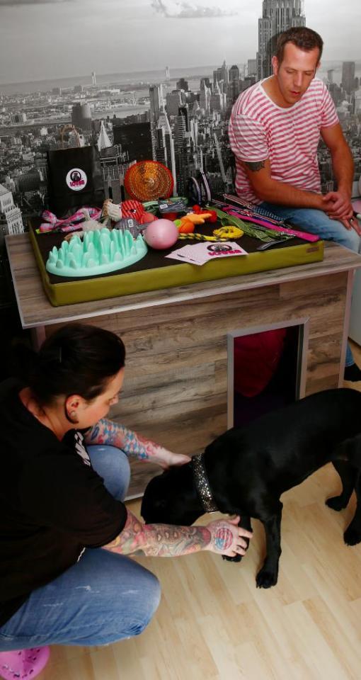 wirtschaft alles f r den hund nachrichten neu ulm augsburger allgemeine. Black Bedroom Furniture Sets. Home Design Ideas