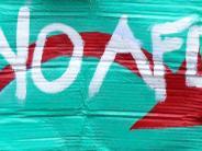 Debatte: Jetzt sprechen die 87 Prozent, die nicht die AfD wählten