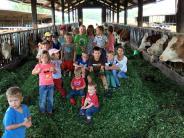 Berg im Gau-Lampertshofen: Mit dem Bauernverband durchs Jahr