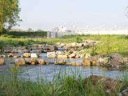 Bertoldsheim: Fischaufstieg de luxe