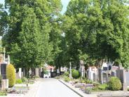 Neuburg: Grab-Streit: Tomaten bleiben erlaubt