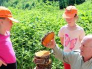 Rennertshofen: Kinder lernen den Wald mit allen Sinnen kennen