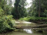 Neuburg: Dialog über Donau-Auen geht weiter