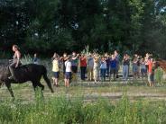 Neuburg-Joshofen: Die Pferde werden aufs Publikum vorbereitet