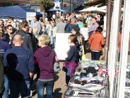 Neuburg: Tausende im Marktsonntags-Fieber