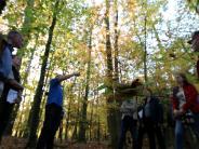 Neuburg/Rennertshofen: Wie der Wald geplant wird