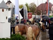 Neuburg-Laisacker: Glaubensbekenntnisse hoch zu Ross