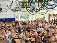 Neuburg: So soll das Neuburger Volksfest wiederbelebt werden