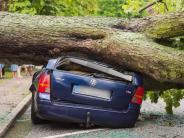 Rekordhitze: Schwere Unwetter und ein Tornado: Mindestens zwei Tote