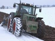 Landwirtschaft: Die Bauern profitieren vom frostigen Wetter