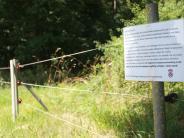Augsburg/Oettingen: Oettinger Forst: Noch immer Zoff um den Zaun