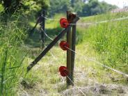 Gerichtsstreit: Es war einmal ein Wildschutzzaun