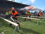 Wilburgstetten: Am Ende versagte die Kettensäge