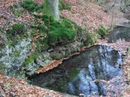 : Die Mühlen entlang der Schwalb