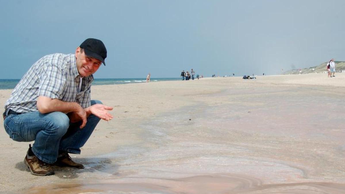 Natur Rosa Teppich aus Meeresleuchttierchen vor Sylt