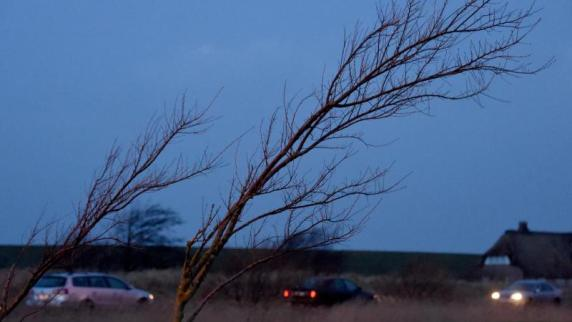 """Wetter: Sturmtief """"Thomas"""" richtet auch Schäden in der Region an"""