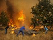 Massenevakuierung: Zehntausende fliehen vor Waldbrand in Kanada