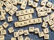 """Gesellschaft für deutsche Sprache: """"Postfaktisch"""" ist Wort des Jahres 2016"""