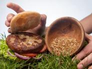 Bux-Burger: Jetzt kommt der Insekten-Burger auf den Tisch