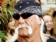 Medien: Silicon-Valley-Milliardär finanzierte Hulk Hogans Klage