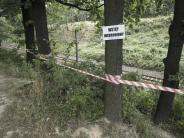 Nazi-Gold: Schatzgräber wollen Nazi-Goldzug mit neuer Methode finden