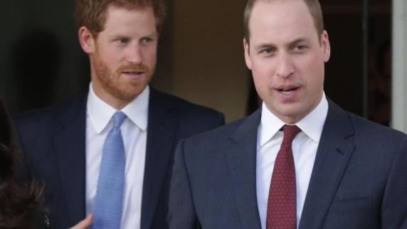 William und Harry sprechen über das letzte Telefonat mit ihrer Mutter