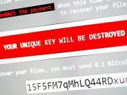 Opfer werden zu Komplizen: Cyber-Experte warnt vor neuem Erpressungstrojaner «Popcorn»